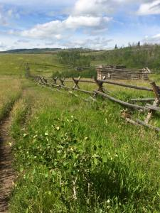 Old barn & hiking trails